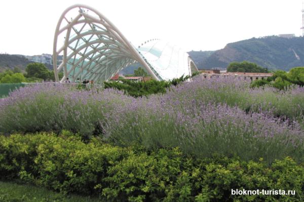 Парке Рике и мост Мира