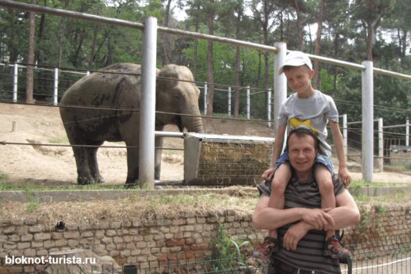 Зоопарк в Тбилиси - одна из достопримечательностей Грузии