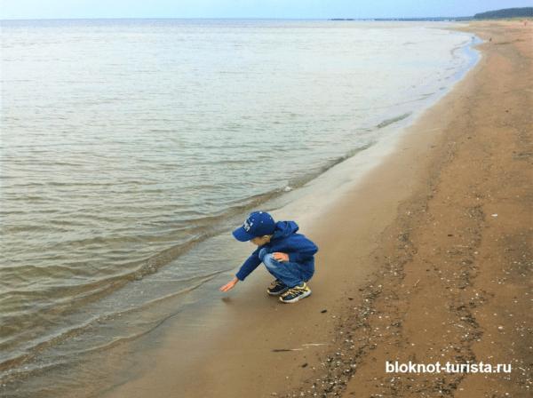 Пляж в Усть-Нарве летом