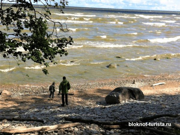 Берег Балтийского моря в Эстонии