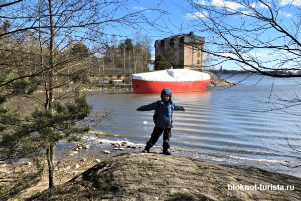Хельсинки: в зоопарке Коркесаари