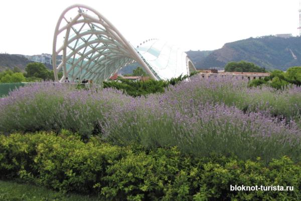 Мост Мира в Тбилиси - интересное развлечение для детей