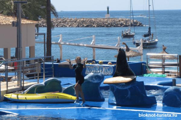 Шоу в дельфинарии Маринленд на Майорке