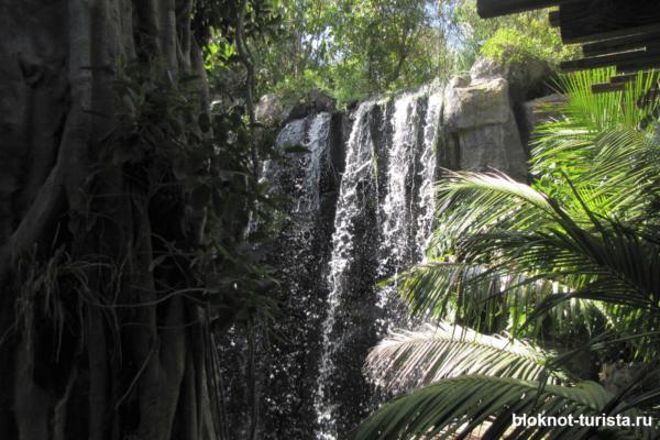 Водопад в тропической зоне аквариума Пальмы