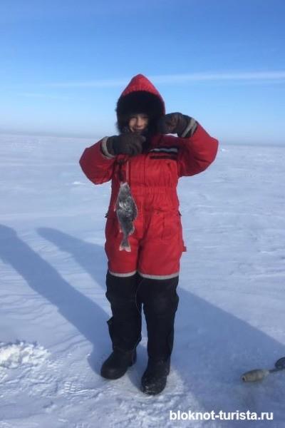 Ловим окуня на Онежском озере в Карелии