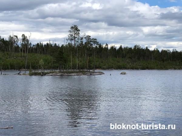Островок на Пяозере в Республике Карелия